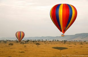 Africa, Kenya, Maasai Mara. Hot-Air Ballooning over the Maasai Mara.